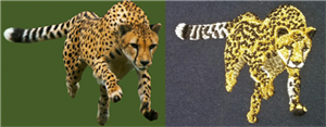 Digitizing Animals